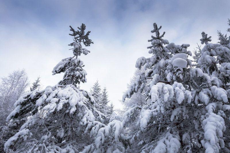 Уральская зимаphoto preview