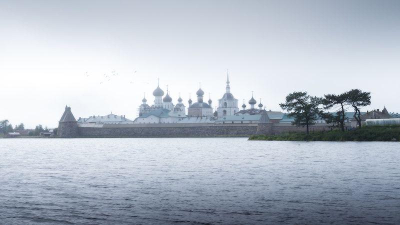 #dervod #drevo #Соловки Ставропигиальный мужской монастырь Русской православной церкви.photo preview