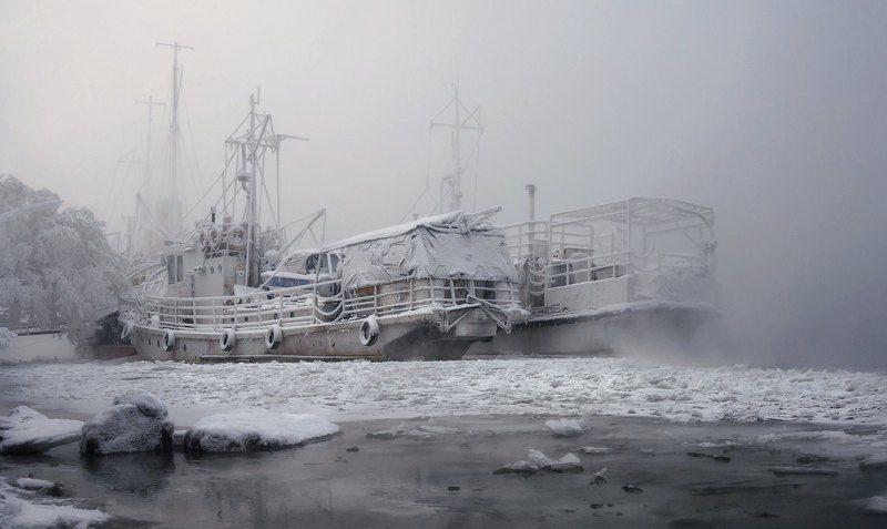 мороз. берег. изморозь. Зимние холода.photo preview