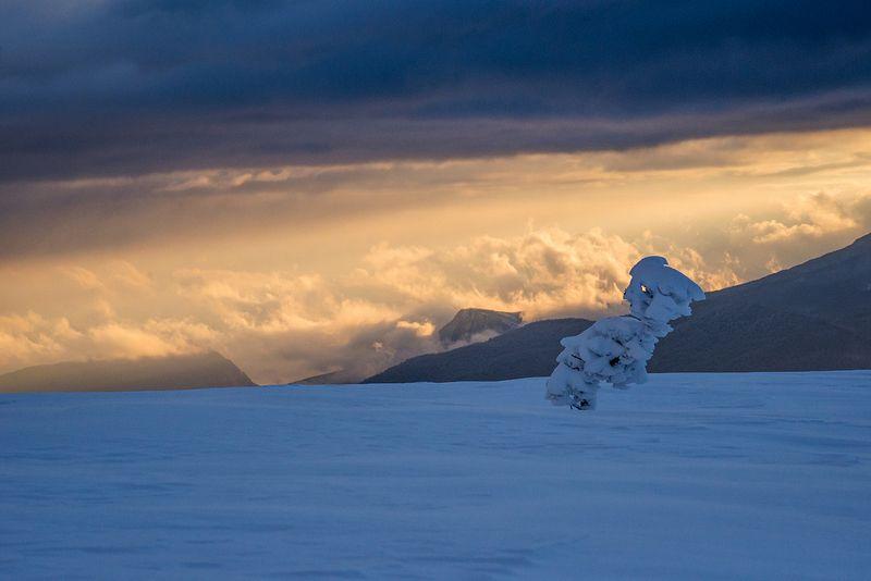 крым Снежный странникphoto preview