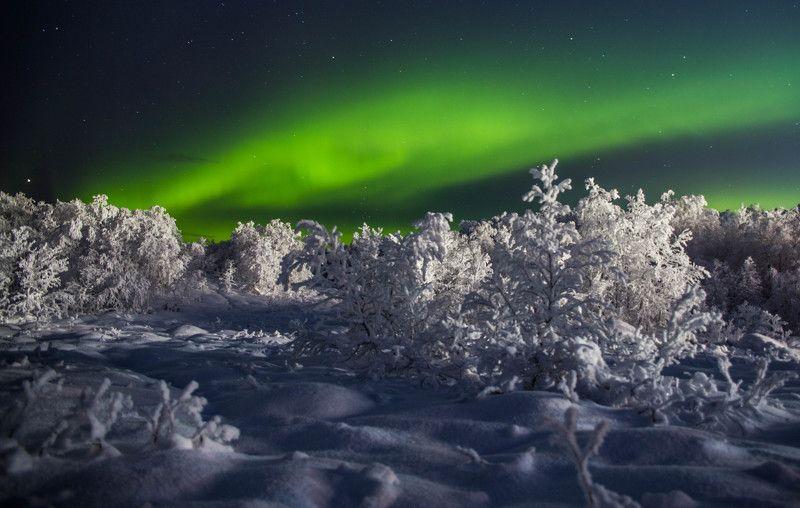 северное сияние, полярное сияние, снег, мороз, зима, ночь Зимняя сказкаphoto preview