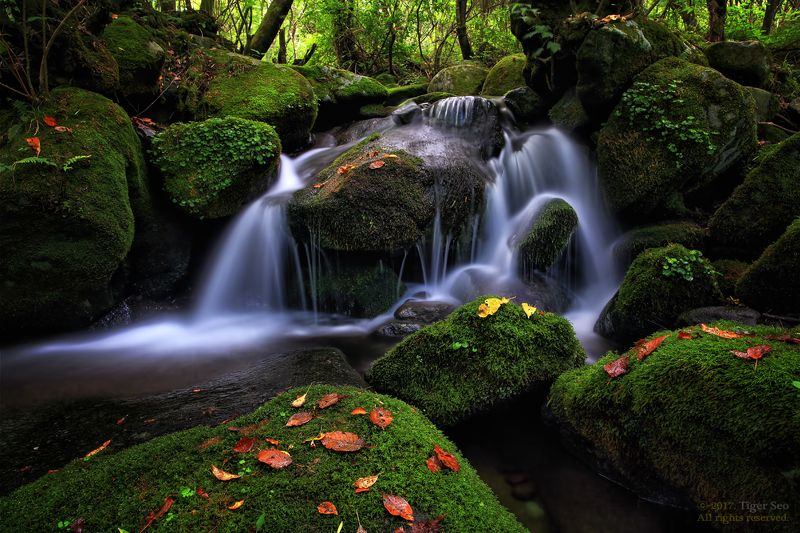waterfall water moss flow stream green valley Korea landscape Deep valleyphoto preview