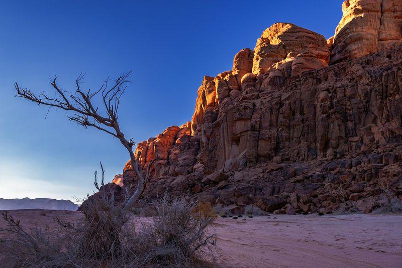 иордания, вади рам, декабрь,  Пустынный вечерphoto preview