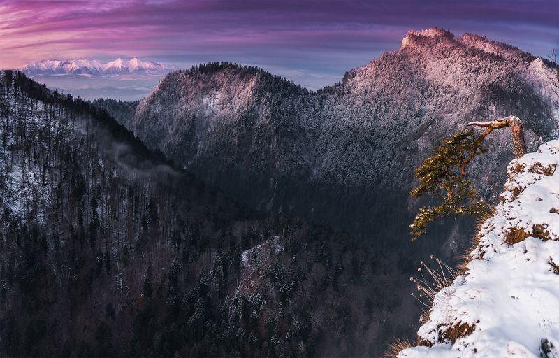 mountains, poland, pieniny, tatry, light, sunrise, sun, light, landscape, hills, colors, winter, snow, Dawnphoto preview