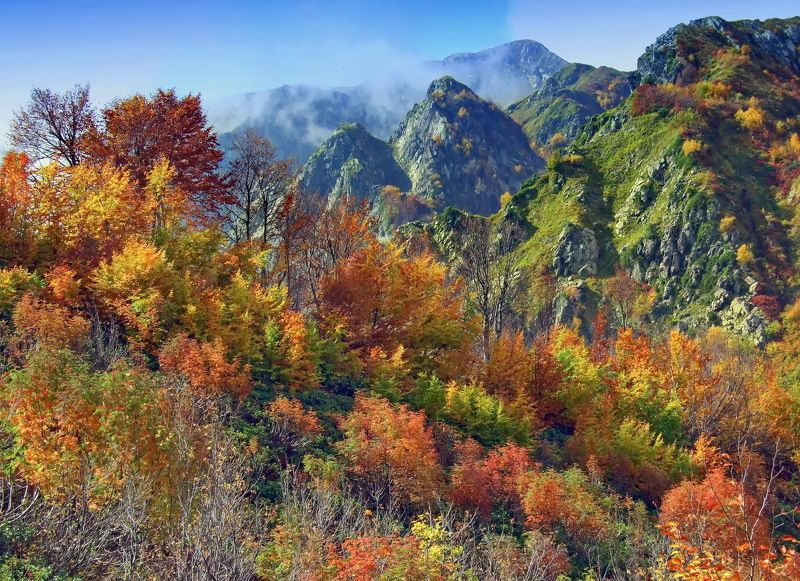 горы осень Краски осениphoto preview
