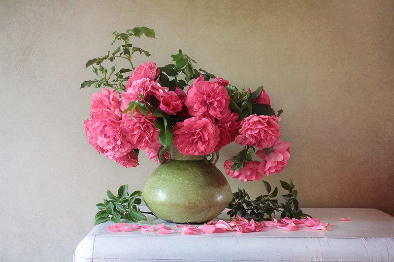 Роняет роза лепестки...photo preview