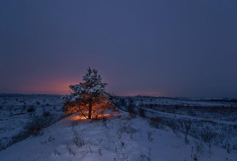 сумерки, свет, снег, декабрь, зима Декабрьский огонёк надеждыphoto preview