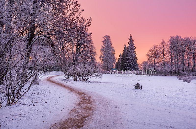 царское село, санкт-петербург Дорожка в паркеphoto preview