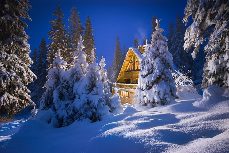 hut, forest, winter, bulgaria, mountain Small hut in the forestphoto preview