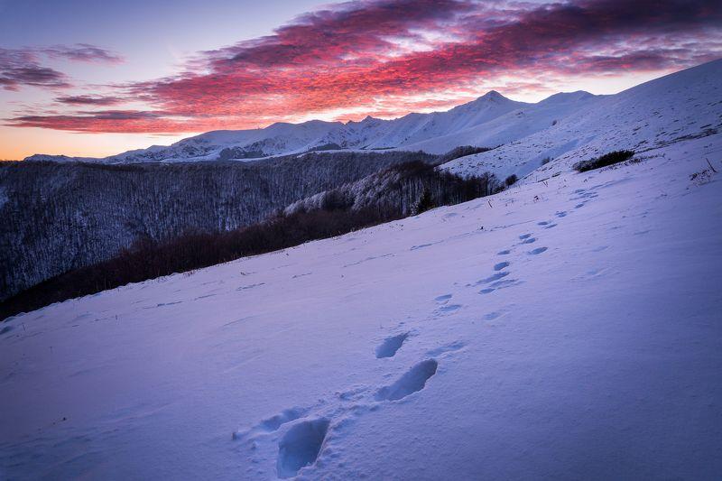 bulgaria, ambaritsa, central balkan, sunrise, botev peak, hut, adventure, travel On the tracks of the sunrisephoto preview