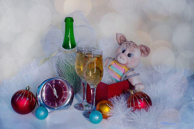 новый год , свинка , игрушка , шампанское , вера павлухина , С наступающим старым Новым Годом !photo preview