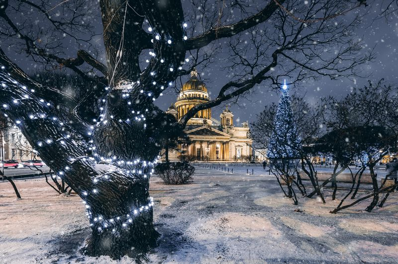 #зима, #пейзаж, #город, #улица, #winter, #city Исаакиевский Скверphoto preview