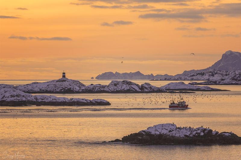 fishermans\\\' boat lofotens norway Fishermans\' boat coming home. Lofotens.photo preview