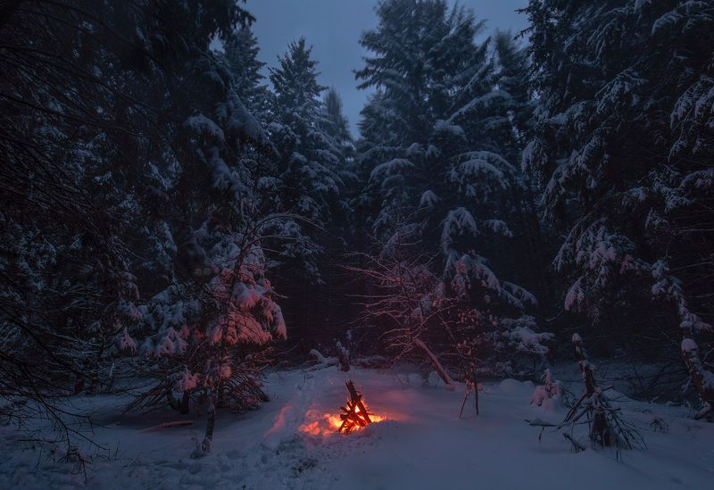 пейзаж, снег, зима, огонь, tamron Сумеречная тишь и одиночество в заснеженном лесуphoto preview