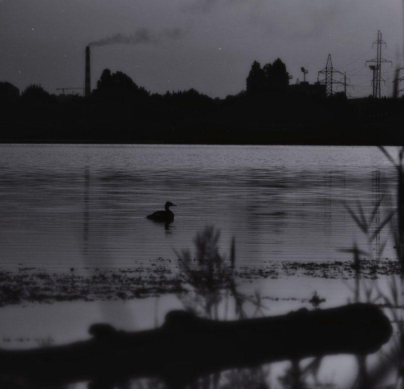 A quiet eveningphoto preview