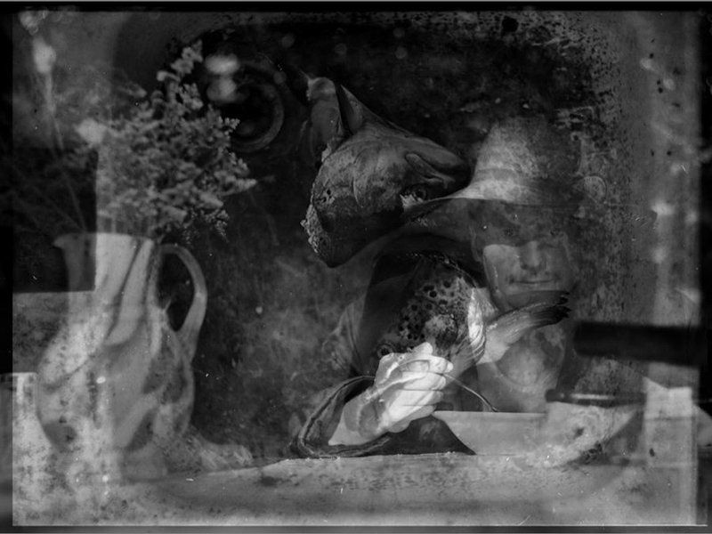 УХА из форелиphoto preview