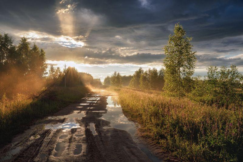 лето,дождь,туман,солнце,небо,тучи,дорога.лужи после летнего дождяphoto preview