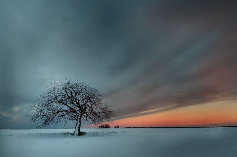Colour winterphoto preview