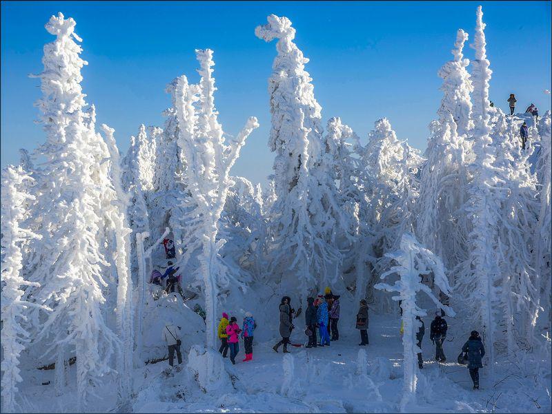 На сцене - зима.photo preview