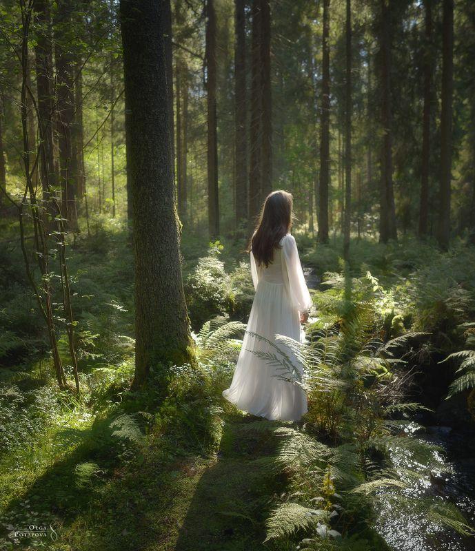 рощино, лес, ель, папоротники, лето, автопортрет, ленинградская область, солнечные лучи, белое платье На Чудесном ручьеphoto preview