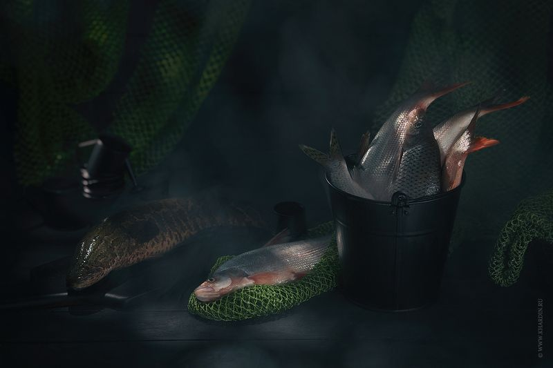 stillife, fish, noir FISHphoto preview