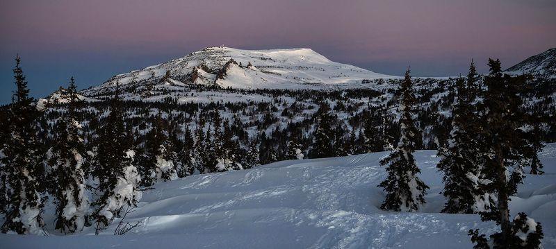 утро, пихты, мороз, рассвет, солнце, зима, гора, зелёная, мустаг, курган, шерегеш, горная шория, сибирь Розовое утро, панорамная версияphoto preview