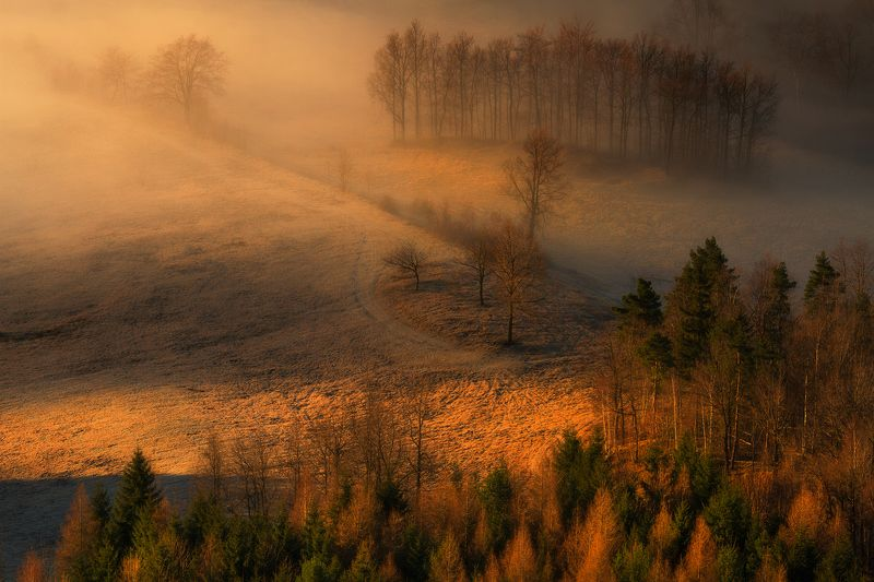 landscape,canon,mist,light,autumn The Beauty in Everything You See...photo preview