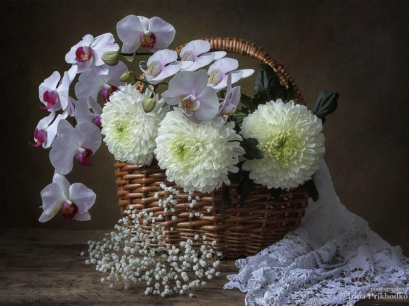 натюрморт, художественное фото, цветочный натюрморт, хризантемы, орхидеи, букет, флористика Натюрморт с корзиной цветовphoto preview