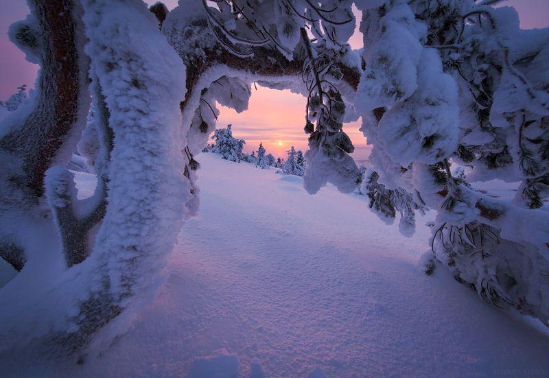 пейзаж,зима,снег,россия,солнце,рассвет,закат,кольский Кандалакшаphoto preview