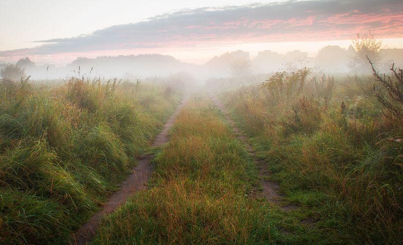 fog,autumn,nature,sky,landscape,nikon,clouds,road,mist,light The way homephoto preview
