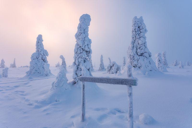 пейзаж, зима, финляндия Путеводитель в заснеженном царстве.photo preview