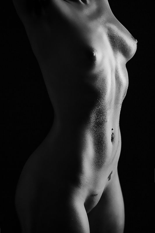 nude, fine art, bodylines, black and white, sexy, tattoos, tattoo, fit body,  down the linesphoto preview