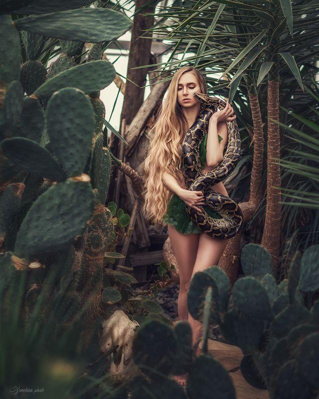 девушка, портрет, нагота, длинные волосы, блондинка, змея, girl, portrait, snake, blonde, long hair photo preview