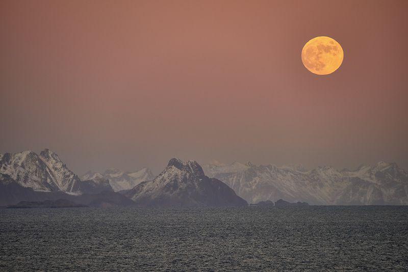 norway, lofoten, island, sea With a view of the Lofoten Islandsphoto preview