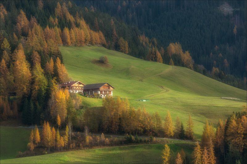 доломитовые альпы,val di funes,италия,осень,деревня,santa maddalena,свет,деревенский пейзаж,alps. Домики в Альпах фото превью