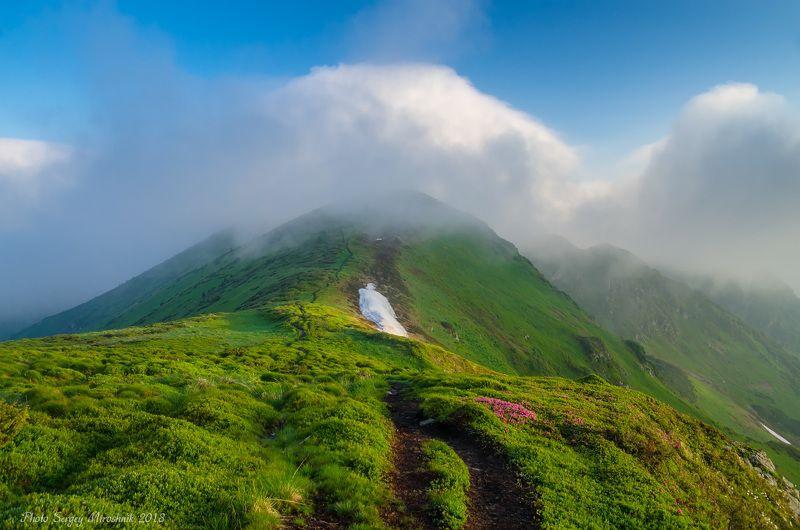 пейзаж, природа, лес, горы лето, туман, утро, путешествие, трекинг, тропа, июнь, камни, украина, карпаты Зацепилась тучка над горойphoto preview