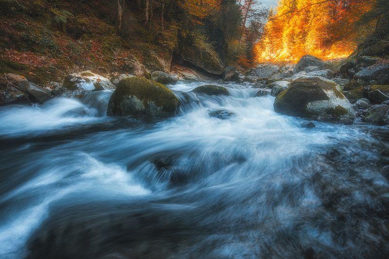 Mountain riverphoto preview