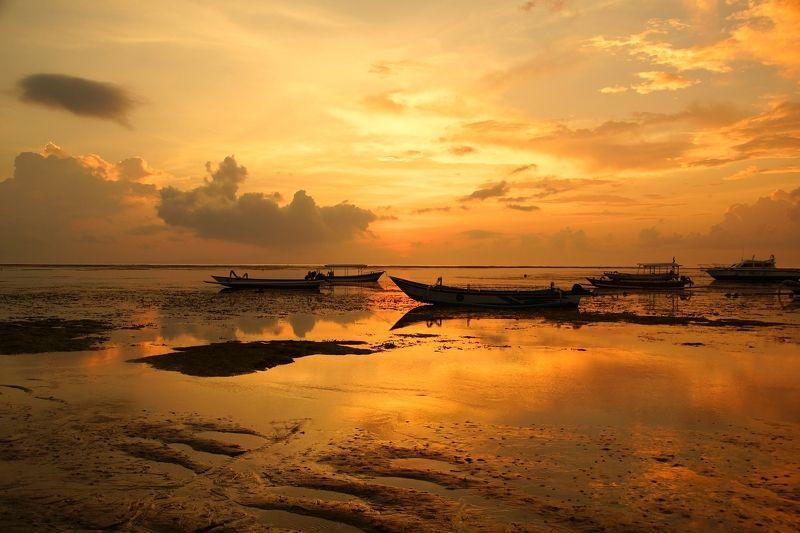 morning, coast, sun, sky, boat, sunrise, dawn, horizon, ocean, sea, summer, water At low tide...photo preview