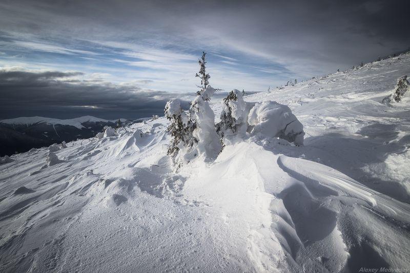 Карпаты, Украина, зима, горганы На склонах Игровцаphoto preview