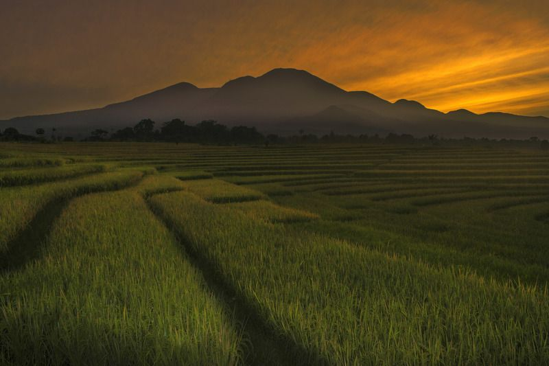 #landscape #nature #mountain line of lifephoto preview