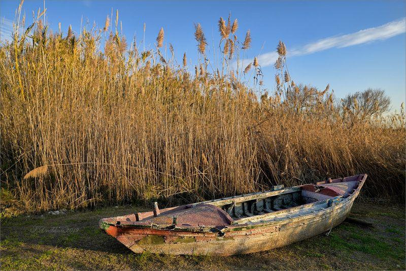 лодка, закат, озеро, камыши, небо Старая лодкаphoto preview
