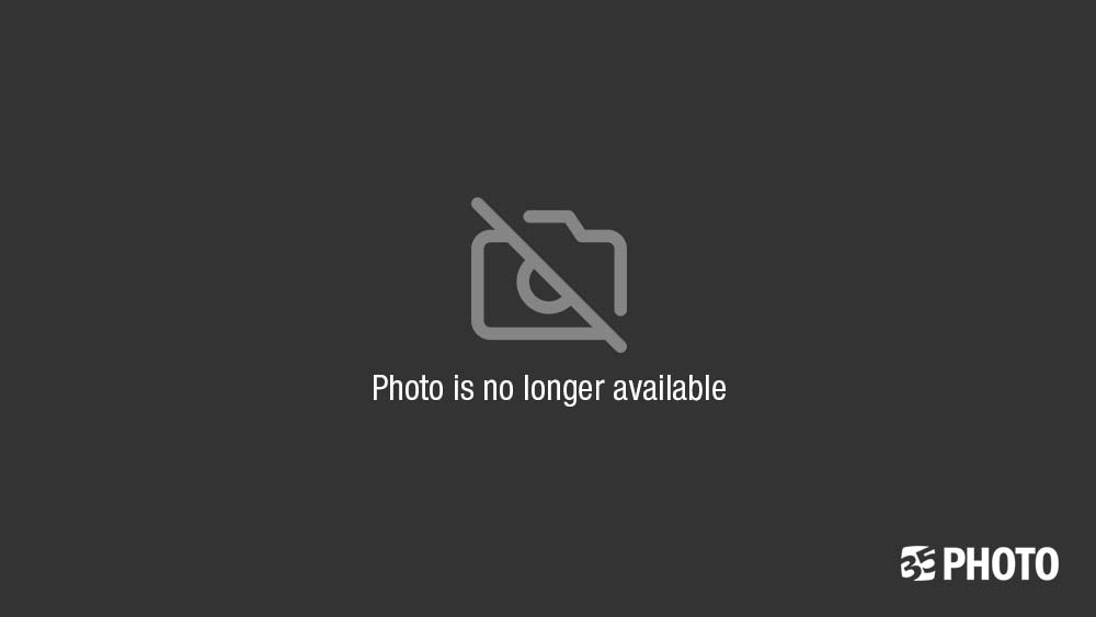 туман, природа, пейзаж, лето, болото, эстония Утро туманноеphoto preview