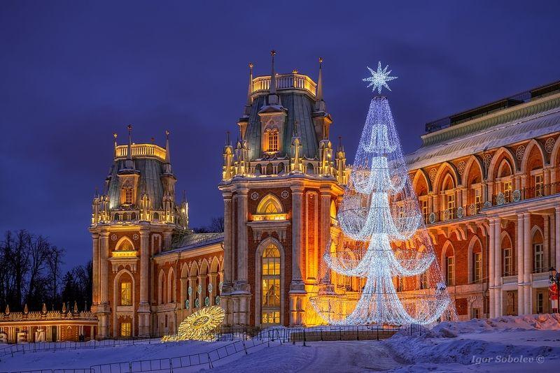 царицыно, зима, новый год, ночь, tsaritsyno, winter, new year, night Новый год в Царицыноphoto preview