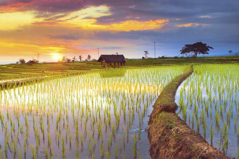 #landscape #nature #sunset #reflection #bengkuluutara miss youphoto preview