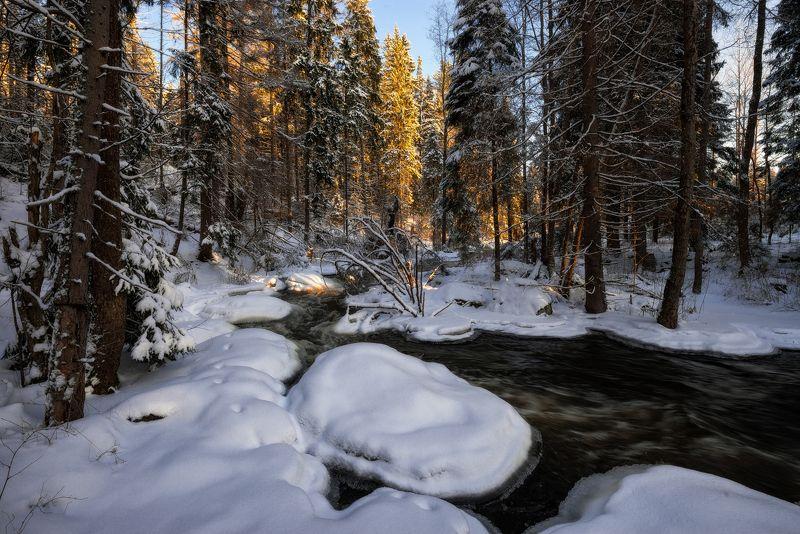зима,снег,лед,река,поток,снег,свет,берега,пейзаж,лес Лесной реки студеные потокиphoto preview