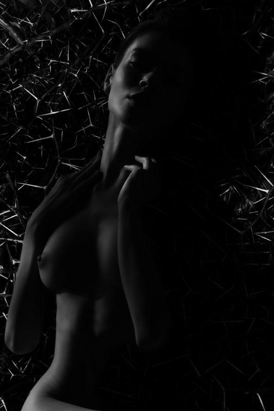 ню, постановочная фотография, женский портрет, художественная фотография, art, nude In thornphoto preview