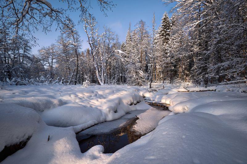 снег, река, мороз, лес, зима в зимнем лесуphoto preview