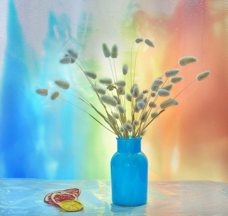 этюд,фантазия, свет,цвет,букет,сухоцвет Сухоцветphoto preview