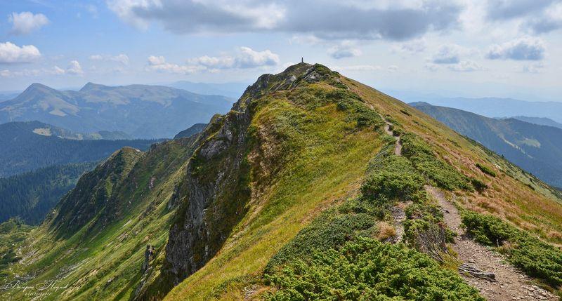 карпаты, мармарошский массив, трансильвания, вершина поп иван (мармарошский) Вижу цельphoto preview