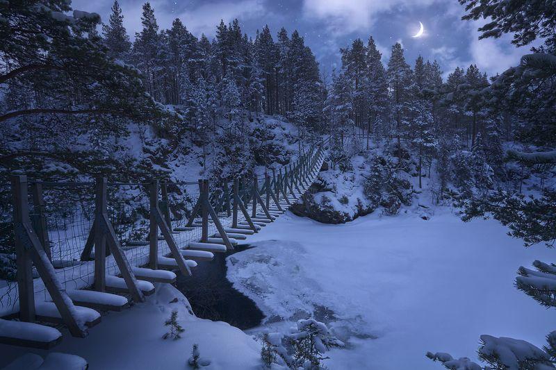 финляндия, оуланка, ночь, зима Лунная мелодияphoto preview